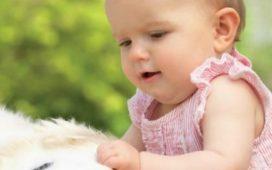 Аллергия у детей: виды, причины, симптомы, лечение, профилактика